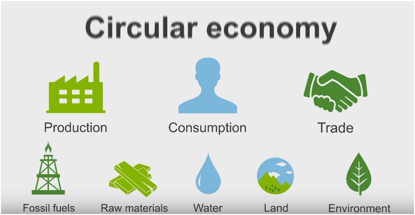 bioeconomia2