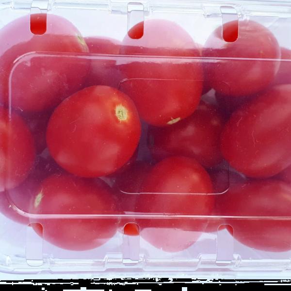 Pomodoro pixel senza nichel confezione 500 grammi