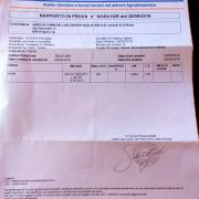 certificato senza nichel